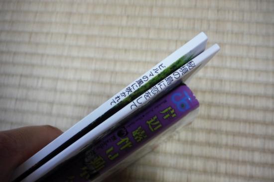 DSCF0263.jpg
