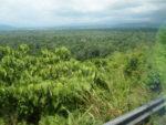 パプアニューギニア国境